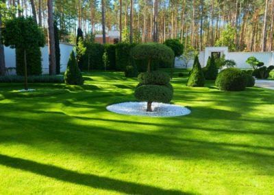 Сад свободного планирования Капля