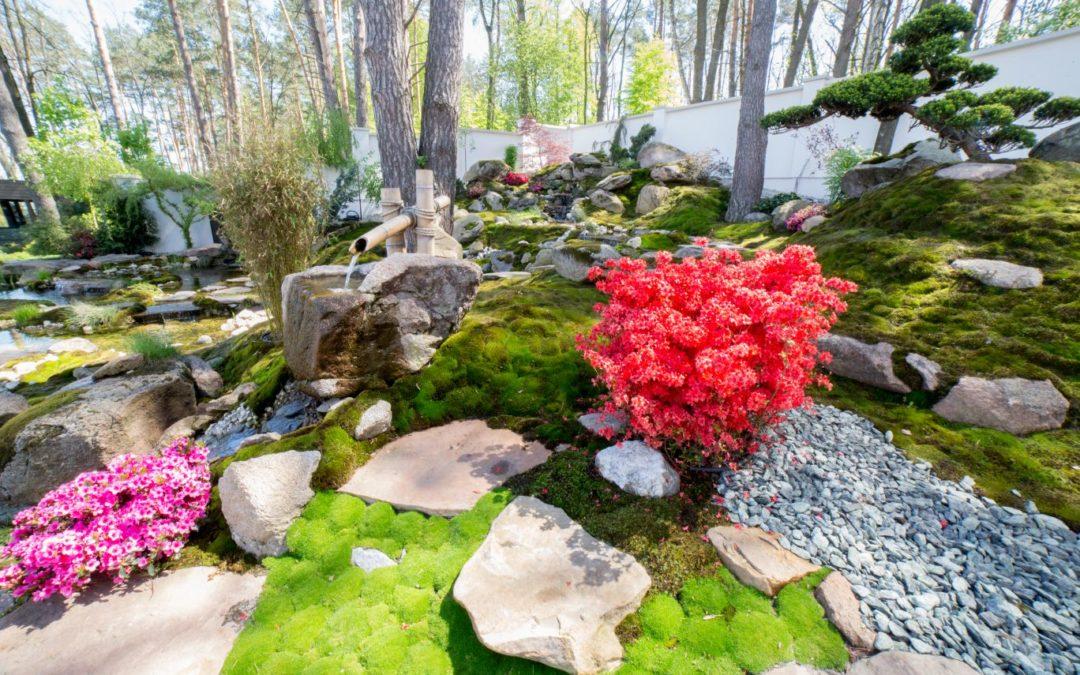 Японский сад, ландшафтный дизайн