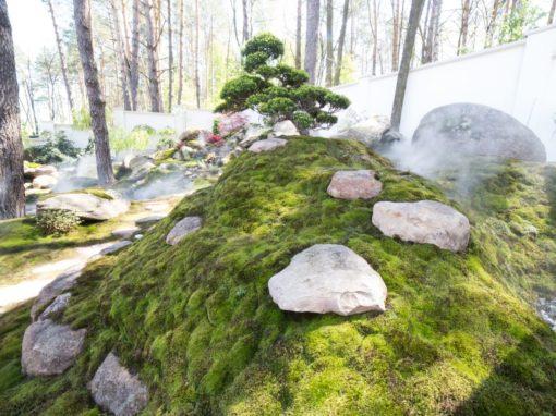 Геопластика в виде холмов с камнем