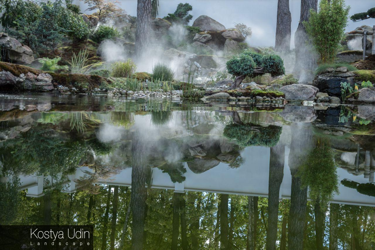 Японский сад с туманом