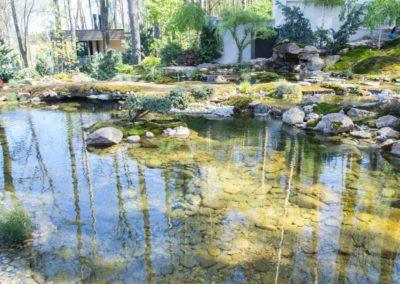 Озеро в японском саду