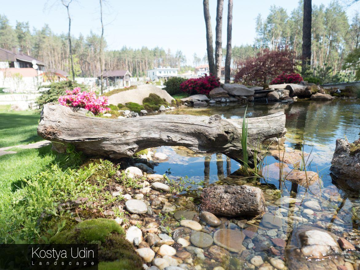 Декоративное озеро на участке