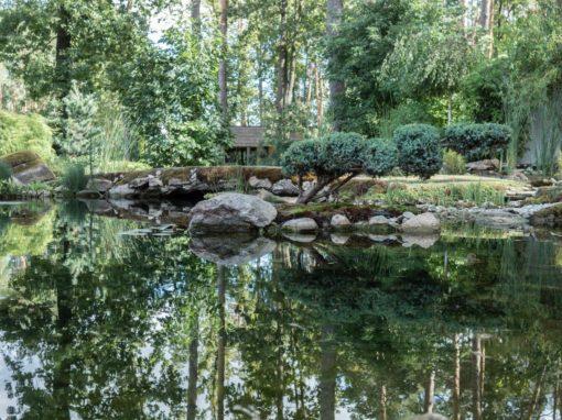 Японское озеро с бонсаями