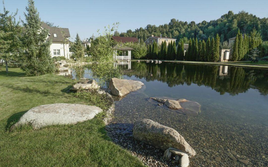 Плавательный пруд в пейзажном стиле