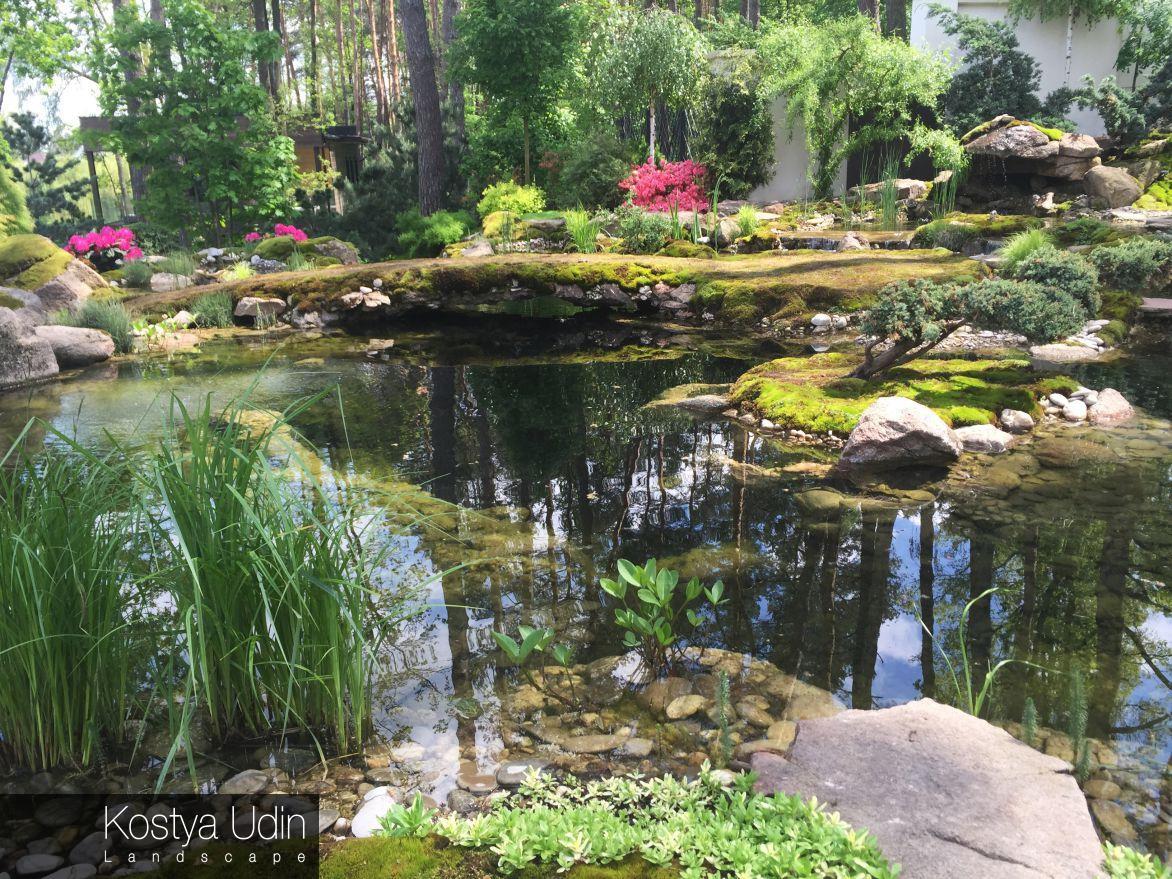 Декоративный пруд в японском саду
