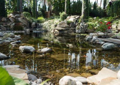 Декоративный пруд с мелководьем