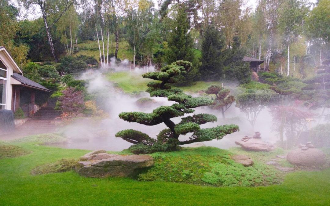 холмы для японского сада