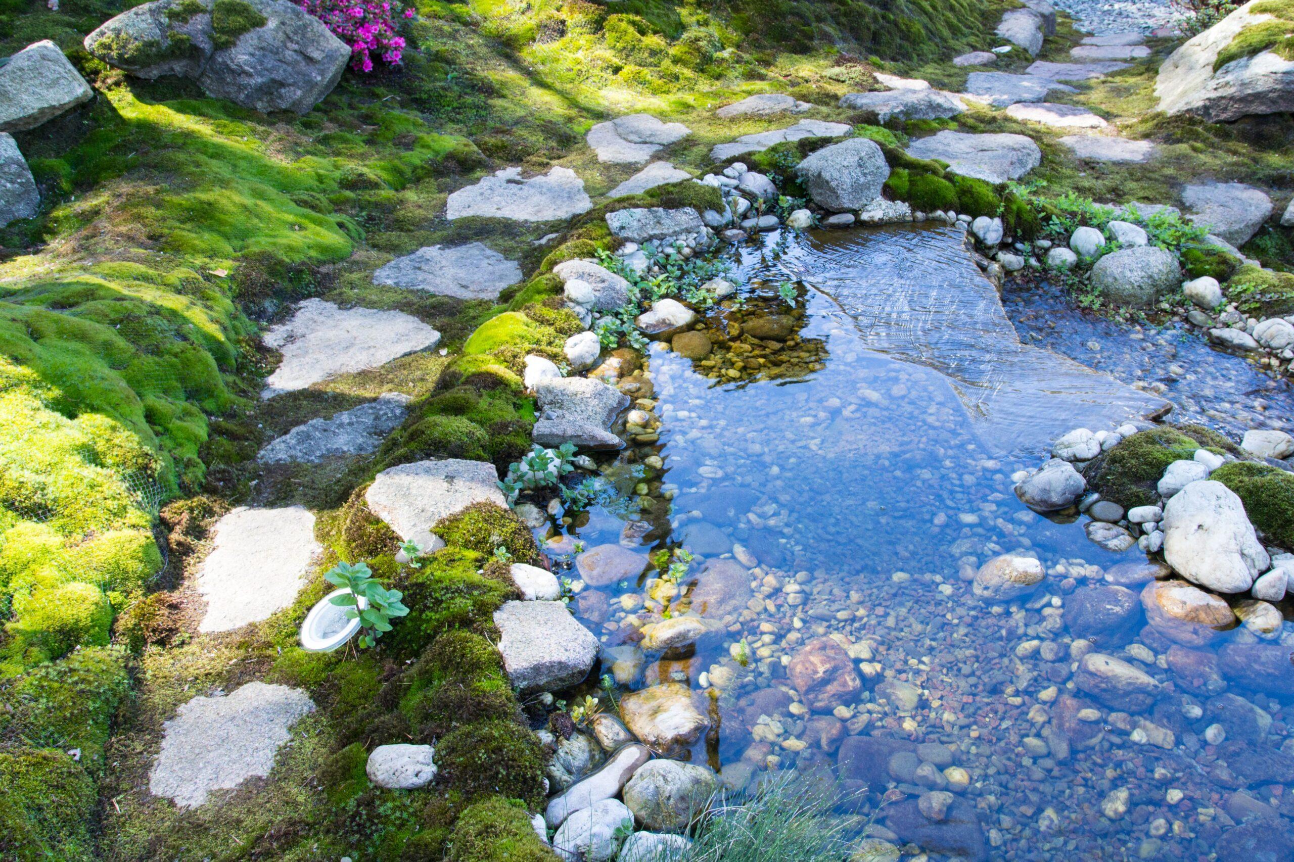 Строительство декоративных прудов и водоёмов!